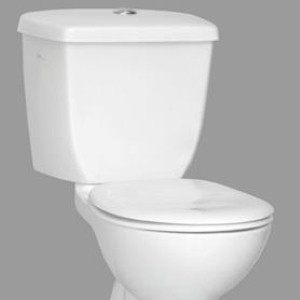 Plumber constructs world's fastest toilet