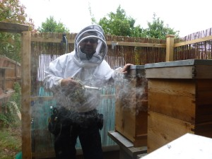 Army captain turned beekeeper wins award