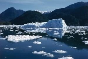 Military junior doctors host fundraiser ahead of Arctic challenge