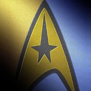 To boldly go... Couple get married in Klingon wedding
