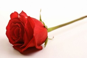 Valentine's Day will cost consumers £125